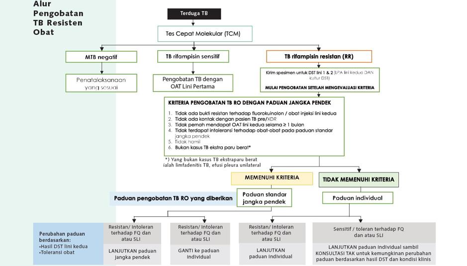 Alur Pengobatan TB RO