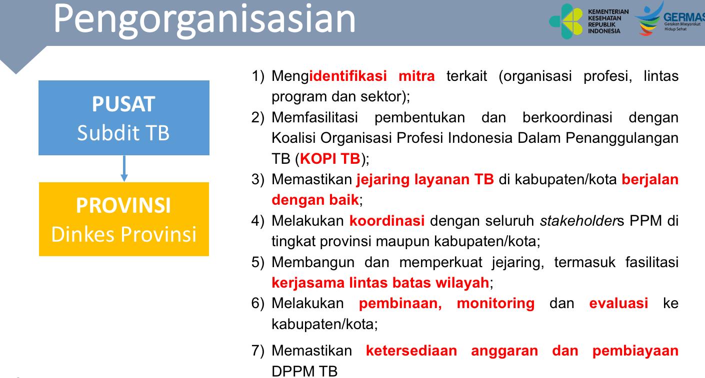 Pengorganisasian dari Pusat Kemenkes ke Dinkes Provinsi